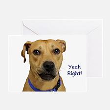 Yeah Right Dog Birthday Greeting Cards