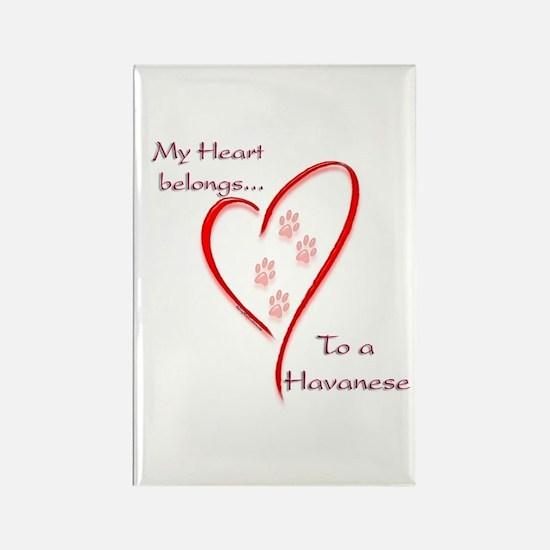 Havanese Heart Belongs Rectangle Magnet