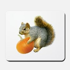 Squirrel with Pumpkin Mousepad