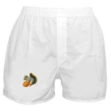 Squirrel with Pumpkin Boxer Shorts