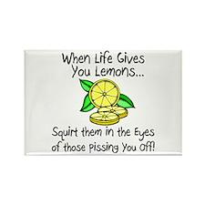 Funny Lemons Magnets