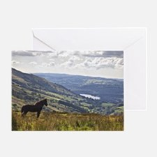 Note card with a horse scene Greeting Cards