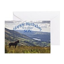 For son, birthday card with horse Greeting Cards