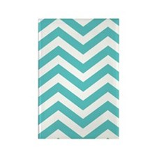 Aqua and White Chevron Magnets