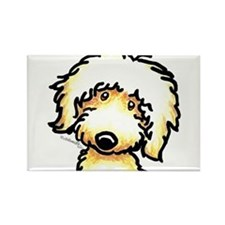 Yellow Labradoodle Face Rectangle Magnet
