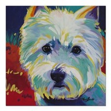"Cairn Terrier - Buddy Square Car Magnet 3"" x 3"""