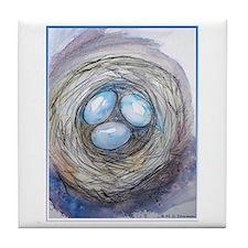 Robins nest, blue eggs, bird art, Tile Coaster