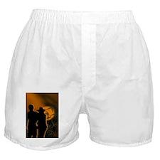 Romance Boxer Shorts