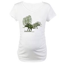 stegosaurus.jpg Shirt