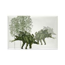 stegosaurus.jpg Rectangle Magnet