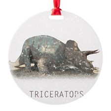 3-triceratops.png Ornament