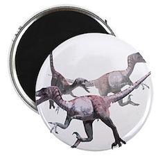 """3-velociraptor.png 2.25"""" Magnet (100 pack)"""