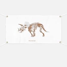 triceratops skeleton.png Banner