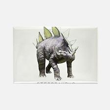 Unique Stegosaurus Rectangle Magnet