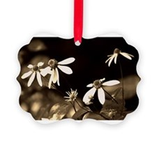 Black and White Photo of Flowers Ornament