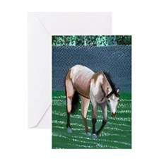 Buckskin Quarter Horse Greeting Cards