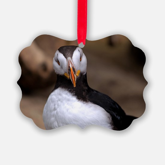Puffin Horned 9020 Ornament