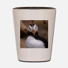 Puffin Horned 9020 Shot Glass