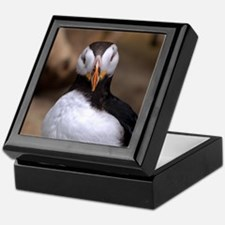 Puffin Horned 9020 Keepsake Box