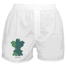 Love Science (Love Science) Boxer Shorts