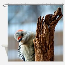Cute Feed birds Shower Curtain