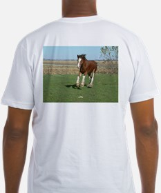 Fitted T-shirt, tess on back