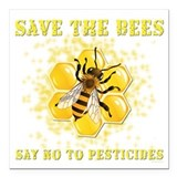 Bees Square Car Magnets