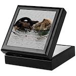California Sea Otter Keepsake Box