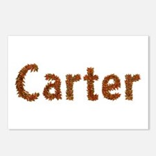 Carter Fall Leaves Postcards 8 Pack