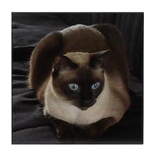 Lulú, the Siamese Cat Tile Coaster