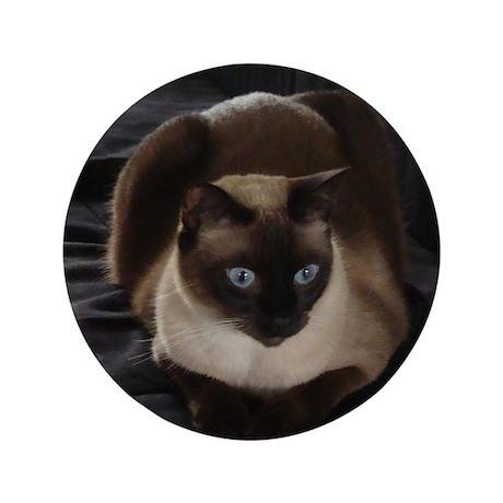 "Lulú, the Siamese Cat 3.5"" Button"