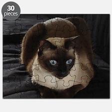 Lulú, the Siamese Cat Puzzle