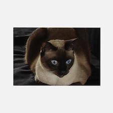 Lulú, the Siamese Cat Rectangle Magnet