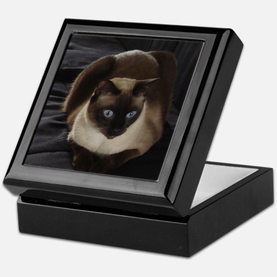 Lulú, the Siamese Cat Keepsake Box