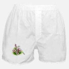 Spring Dove Boxer Shorts