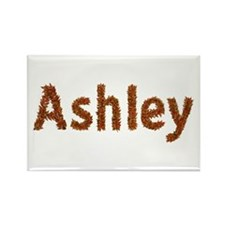 Ashley Fall Leaves Rectangle Magnet