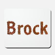 Brock Fall Leaves Mousepad