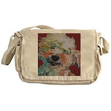 Froddo Messenger Bag