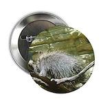 porcupine 2 Button