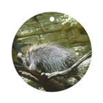 porcupine 2 Ornament (Round)