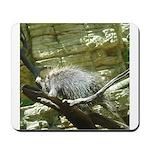 porcupine 2 Mousepad