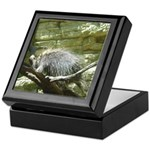 porcupine 2 Keepsake Box