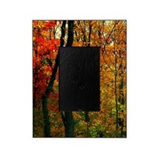 Autumn Trees Picture Frame