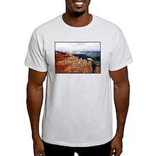 Bryce National Park Ash Grey T-Shirt
