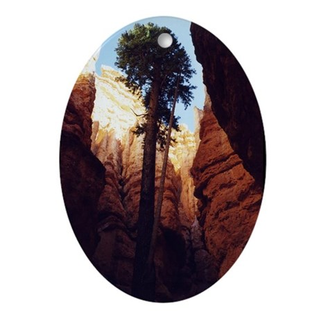 Bryce National Park Oval Ornament