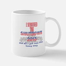 I Survived the Government Shutdown 2013 Mugs