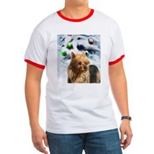 Australian Terrier T