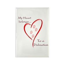 Dalmatian Heart Belongs Rectangle Magnet