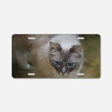Ragdoll Cat Aluminum License Plate