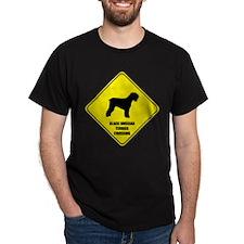 Russian Crossing T-Shirt